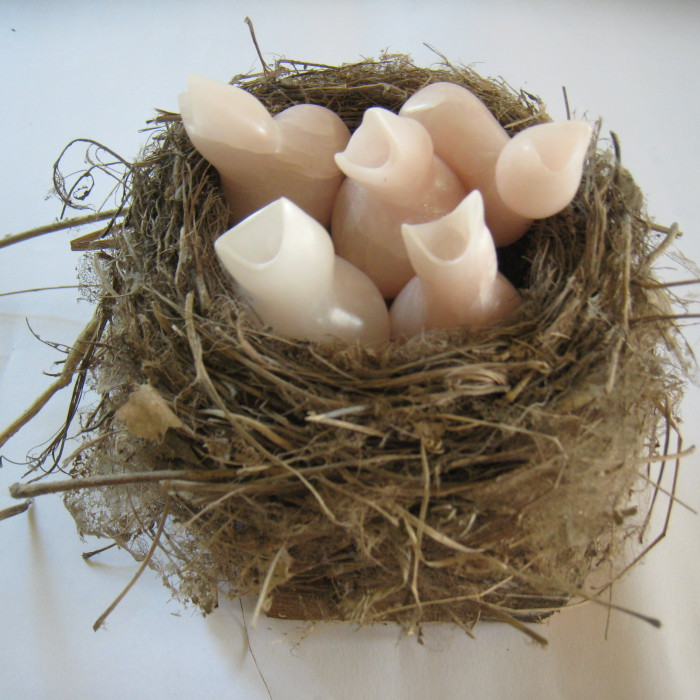 Nest, Chinese speksteen